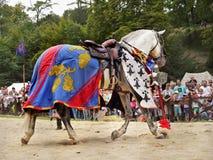 Trajes medievales del caballo Imagen de archivo libre de regalías