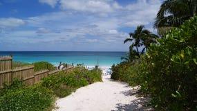 Trajeto à água claro de turquesa de uma praia das caraíbas Imagem de Stock Royalty Free