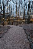 Trajeto às cordas das copas de árvore e ao curso de obstáculo na noite fotografia de stock royalty free