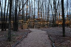 Trajeto às cordas das copas de árvore e ao curso de obstáculo na noite imagens de stock