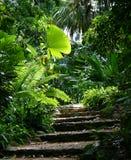 Trajeto #1 do jardim Fotos de Stock Royalty Free