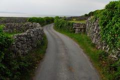 Trajeto ao longo das paredes de pedra na Irlanda fotos de stock