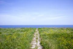 Trajeto ao mar Campo amarelo Oceano azul foto de stock