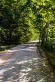 Trajeto através de Forest Of Tesvikiye Village - a Turquia imagens de stock
