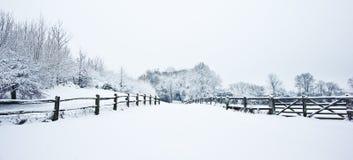 Trajeto através do campo no inverno com neve imagens de stock royalty free