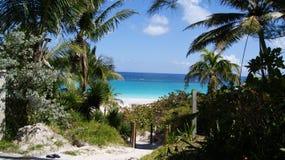 Trajeto bonito à água claro de turquesa de uma praia das caraíbas Foto de Stock Royalty Free