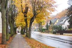 Trajeto bonito do outono com folhas e as árvores coloridas imagens de stock