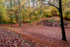 Trajeto bonito do outono na floresta com folhas e as árvores coloridas imagens de stock
