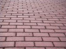 Trajeto Cobbled do pavimento O trajeto é pavimentado com tijolo cinzento Imagens de Stock