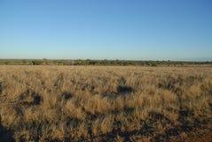 Trajeto com a paisagem árida, seca, interior Queensland, Austrália imagens de stock