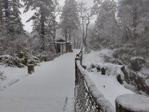 Trajeto congelado frio gelado ao parque Foto de Stock