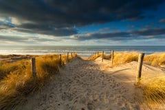 Trajeto da areia à praia do Mar do Norte na luz solar Foto de Stock