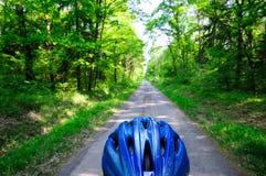 Trajeto da bicicleta da floresta imagem de stock royalty free