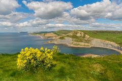 Trajeto da costa oeste sul perto do monte do ` s de Emmett, costa jurássico, Dorset foto de stock royalty free