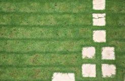 Trajeto 2 da grama do jardim Foto de Stock