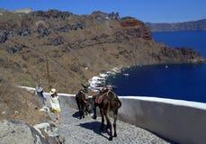 Trajeto da ilha de Thirassia e veículo-mula tradicional Fotografia de Stock Royalty Free