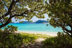 Trajeto da selva à praia do paraíso Foto de Stock
