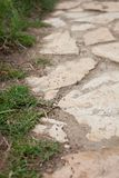 Trajeto das formigas que seguem-se em sua maneira à colônia, Dusty Pathway da pedra situado através do jardim, close up de foto de stock