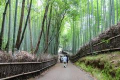 Trajeto de bambu de Arashiyama, Japão Fotos de Stock Royalty Free