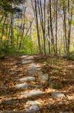 Trajeto de Catskills Imagens de Stock