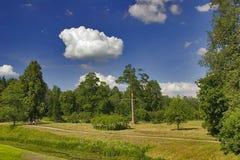 Trajeto de floresta do verão Imagem de Stock Royalty Free