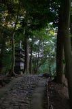 Trajeto de floresta japonês Imagens de Stock Royalty Free