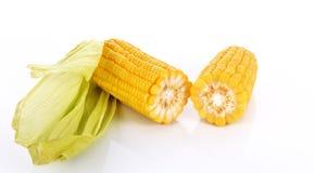 Trajeto de grampeamento dos núcleos da espiga de milho Imagem de Stock