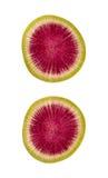 Trajeto de grampeamento isolado fatia do rabanete da melancia Fotografia de Stock