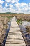 Trajeto de madeira através do pantanal natural do cársico do Dragoman, nuvens macias brancas bonitas no céu Fotos de Stock