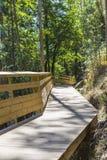 Trajeto de madeira na floresta Imagem de Stock Royalty Free