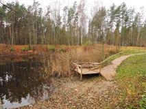 Trajeto de madeira perto do lago Imagem de Stock