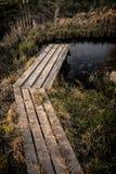 Trajeto de madeira sobre a lagoa pequena no jardim na mola adiantada Fotografia de Stock Royalty Free