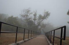 Trajeto de passeio com árvores toda ao redor em um dia ensolarado brilhante Fotos de Stock