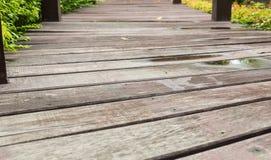 Trajeto de passeio de madeira Foto de Stock