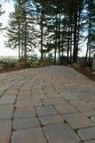 Trajeto de passeio de pedra do Paver do tijolo do jardim Imagens de Stock Royalty Free