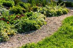Trajeto de pedra com arbustos decorativos foto de stock