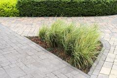 Trajeto de pedra com arbustos decorativos imagem de stock