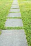Trajeto de pedra do jardim com a grama que cresce acima Foto de Stock Royalty Free