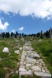 Trajeto de pedra nas montanhas Fotos de Stock Royalty Free