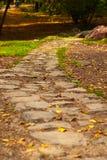 Trajeto de pedra no parque do outono fotos de stock royalty free