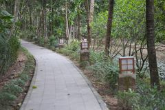 Trajeto de pedra para caminhadas no parque Fotos de Stock