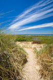 Trajeto de Sandy através das dunas Imagens de Stock