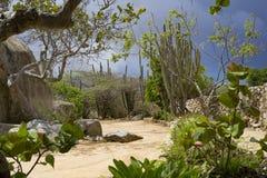 Trajeto de Sandy com o céu escuro na parte traseira Imagens de Stock Royalty Free