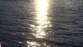 Trajeto de Sun na água video estoque