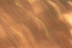Trajeto do borrão claro do fundo Foto de Stock Royalty Free