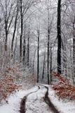 Trajeto do inverno fotografia de stock