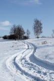 Trajeto do inverno Foto de Stock