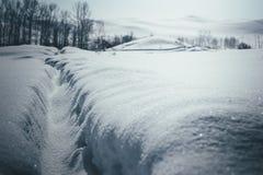 Trajeto do inverno no campo de neve foto de stock royalty free
