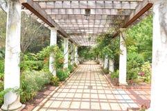 Trajeto do jardim Fotografia de Stock