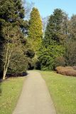 Trajeto do jardim imagens de stock royalty free